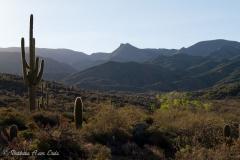 northwest-side-tucson-arizona-trails-5