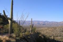 northwest-side-tucson-arizona-trails-6