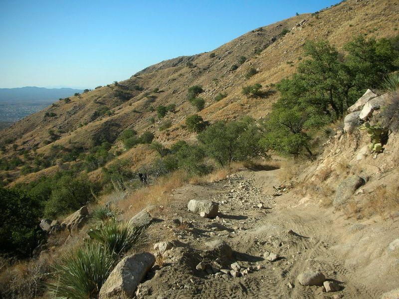 cherry-tank-trail-2