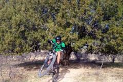 chiva-falls-trails-tucson-arizona-11