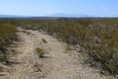 dragoons-to-west-cochise-stronghold-trails-tucson-arizona-7