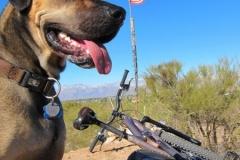 la-milagrosa-trails-tucson-arizona-12