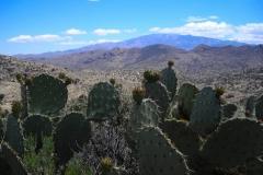 la-milagrosa-trails-tucson-arizona-5