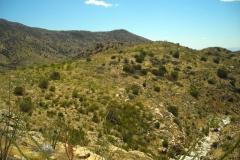 la-milagrosa-trails-tucson-arizona-7