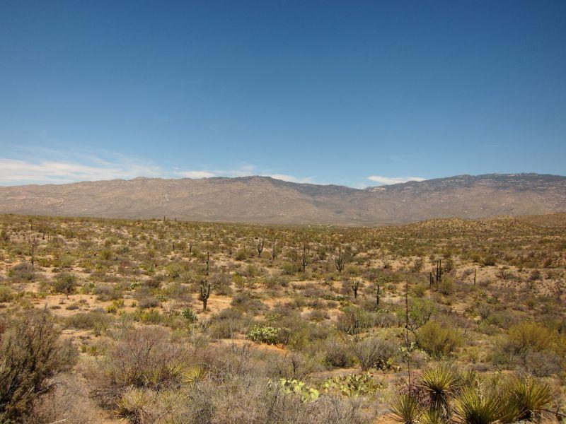 pistol-hill-to-three-bridges-trails-tucson-arizona-11