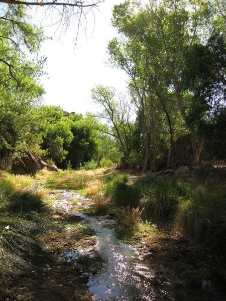 pistol-hill-to-three-bridges-trails-tucson-arizona-4