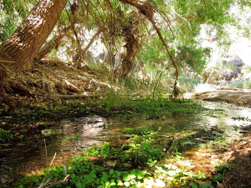 pistol-hill-to-three-bridges-trails-tucson-arizona-5