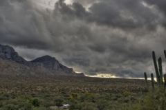 west-desert-trails-tucson-arizona-1
