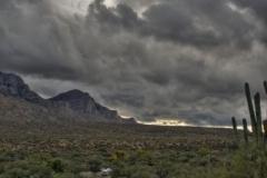 west-desert-trails-tucson-arizona-1