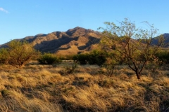 west-desert-trails-tucson-arizona-12