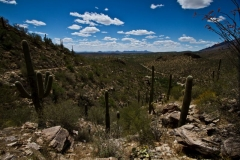 west-desert-trails-tucson-arizona-6