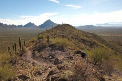 west-desert-trails-tucson-arizona-9