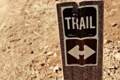 willow-springs-u2013old-pueblo-trail-11