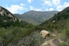 willow-springs-u2013old-pueblo-trail-5