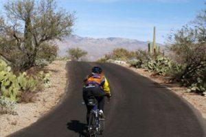 Tucson's Saguaro National Park East is a 9.5 mile intense loop road bike ride